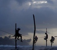 Photo You Must See: Stilt-Fishing in Sri Lanka