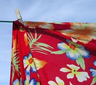 Gov. to Hawaii: Tear Down This Clothesline