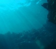 Video You Must See: Underwater Free Fall in the Bahamas
