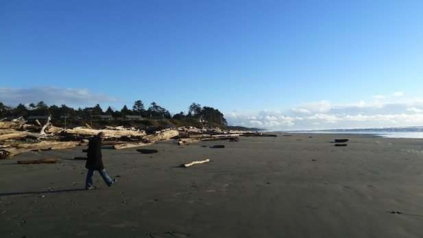 Kalaloch Beach, Olympic Peninsula